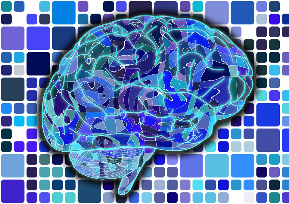 20 Brain Compatible Strategies For Learning Dr Marcia Tate